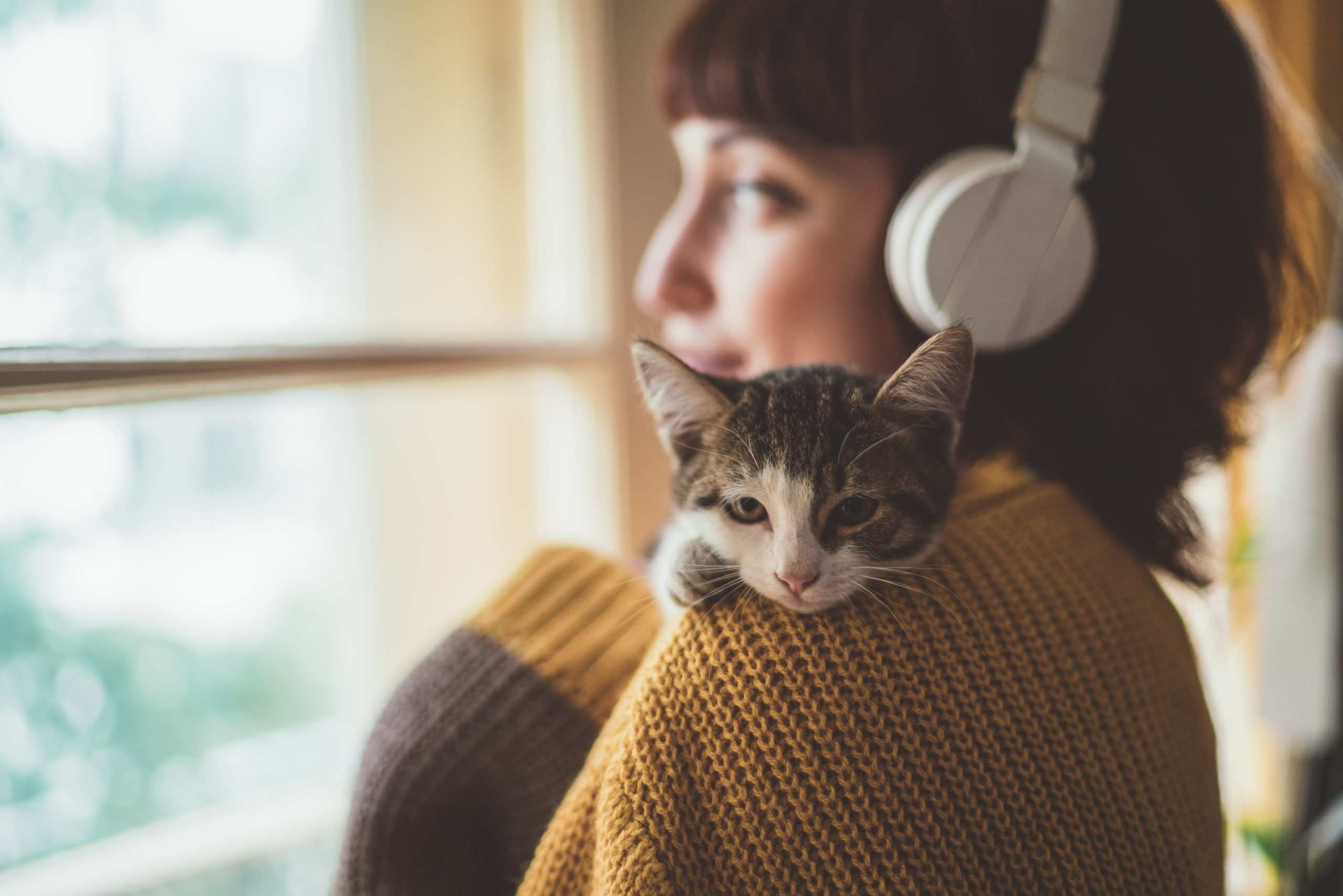 woman at home with headphones holds kitten