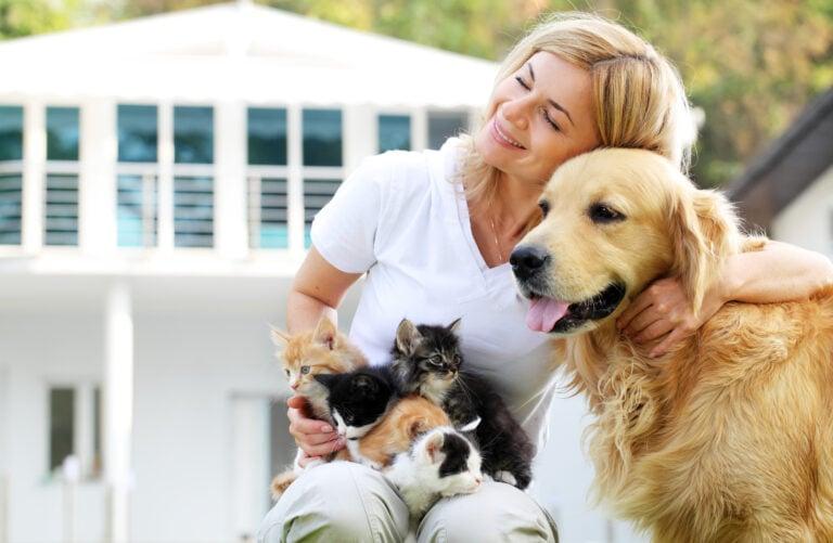 woman hugs golden retriever with 5 kittens in lap