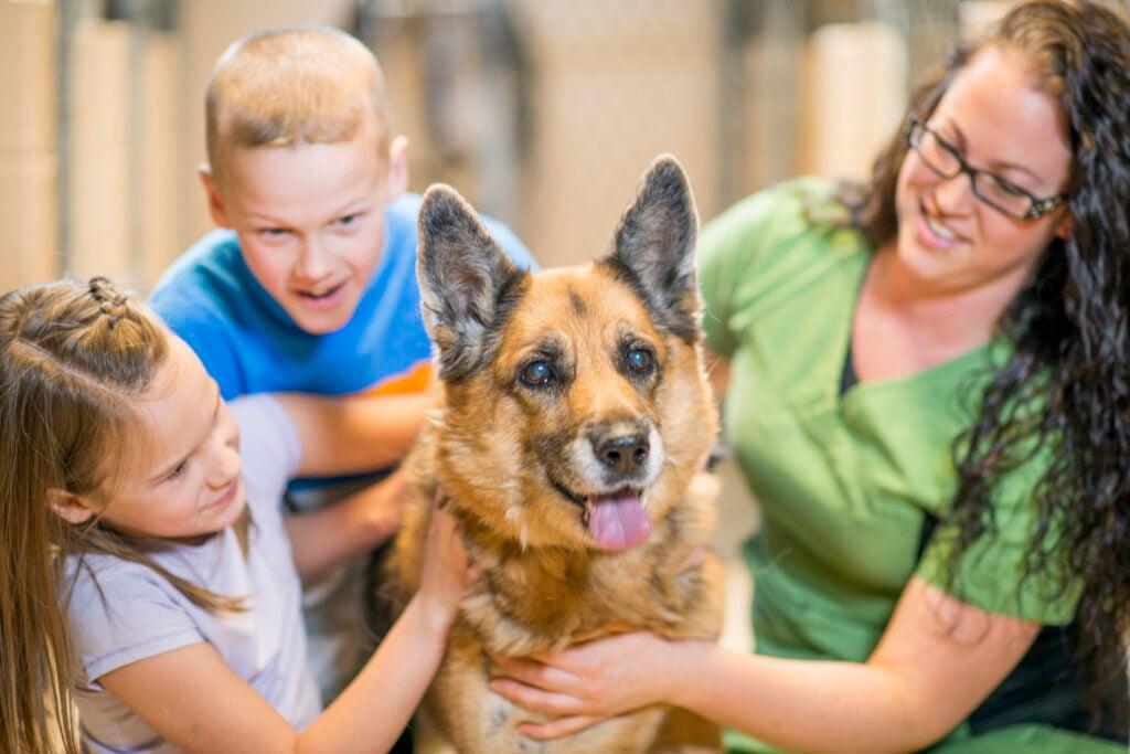 two kids and woman pet german shepherd
