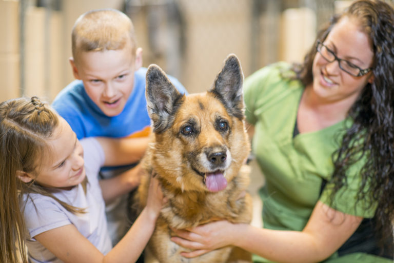 two kids and woman pet german shepherd