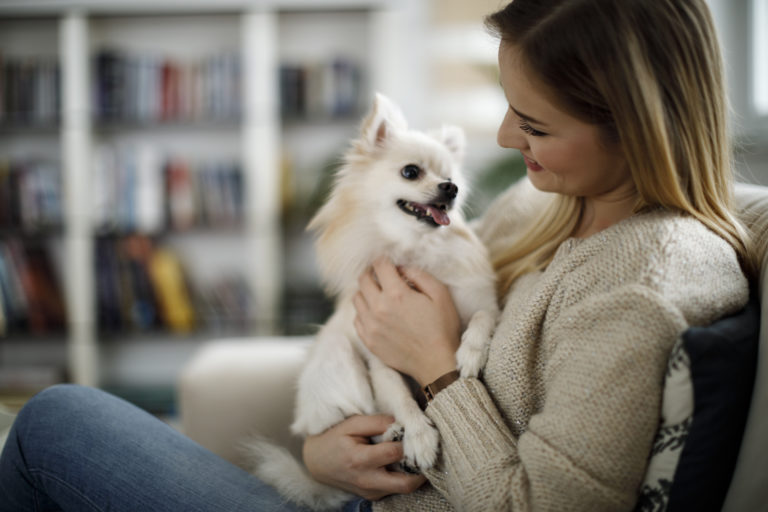 woman holds pomeranian on sofa