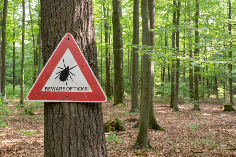 beware of ticks sign posted in woods