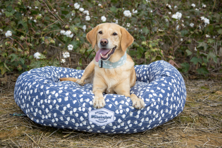 dog in Mississippi Made cotton pattern dog bed