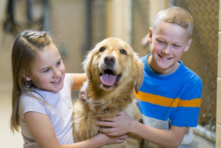 two kids hug golden retriever