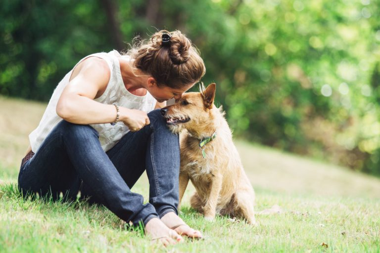 woman cuddles brown terrier in the grass