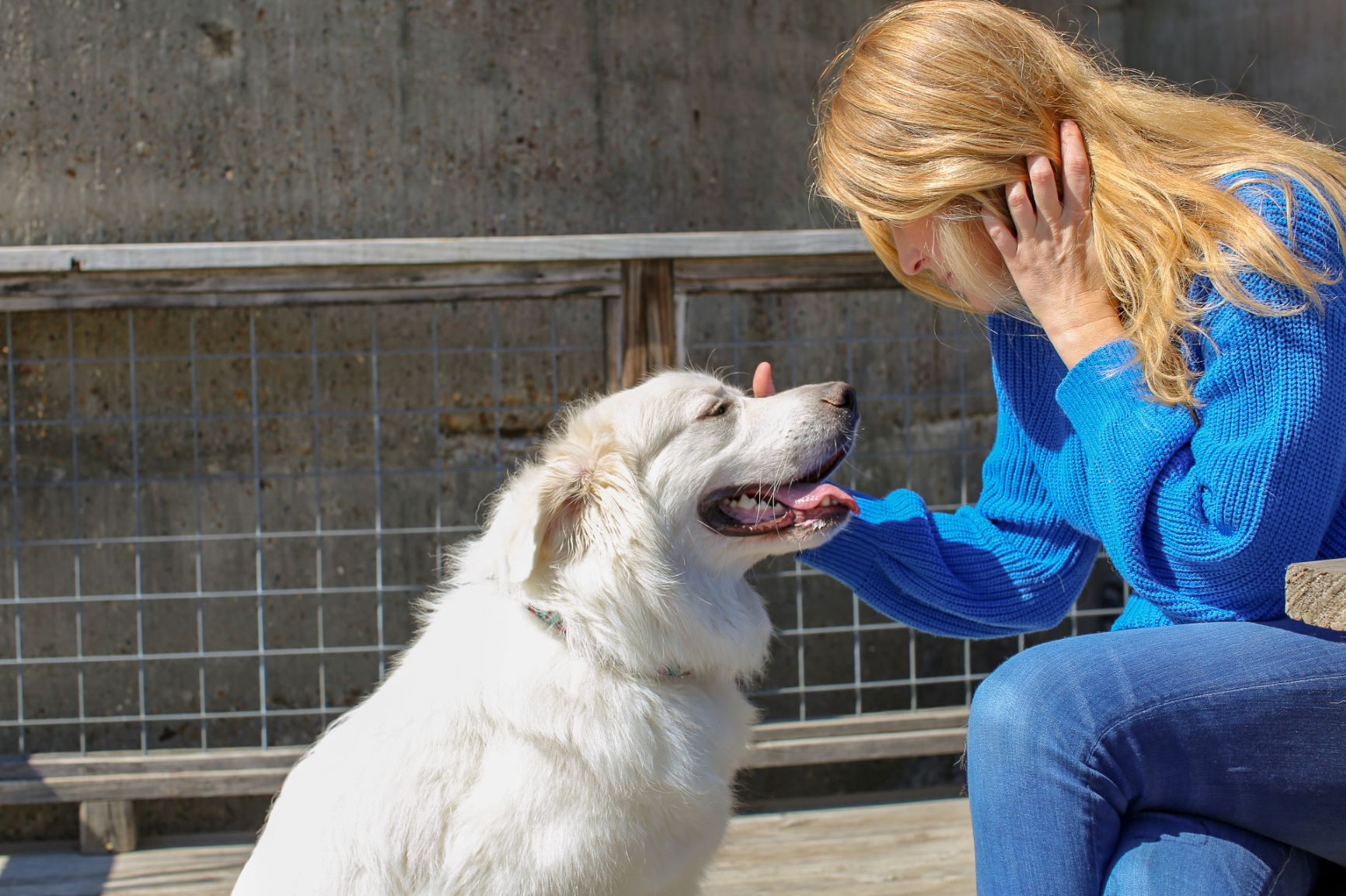 woman sits at table and pets happy white dog