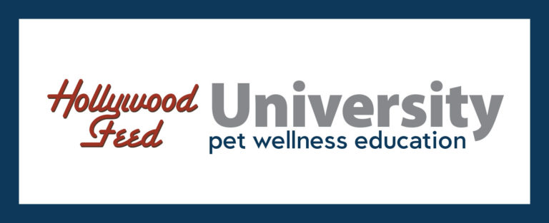 hollywood feed university pet wellness education