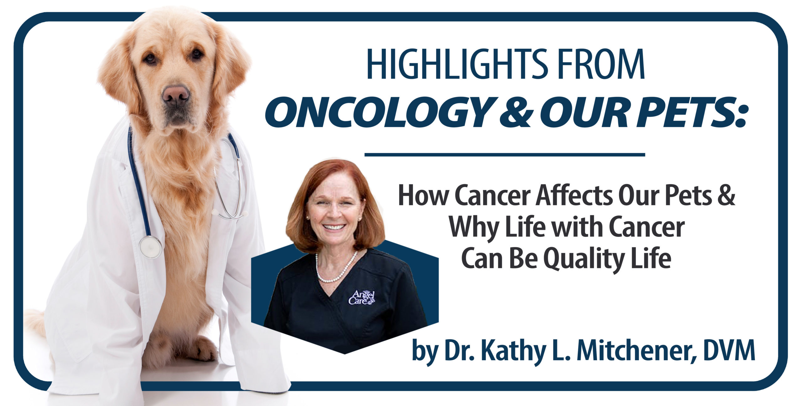 Oncology and Our Pets Header