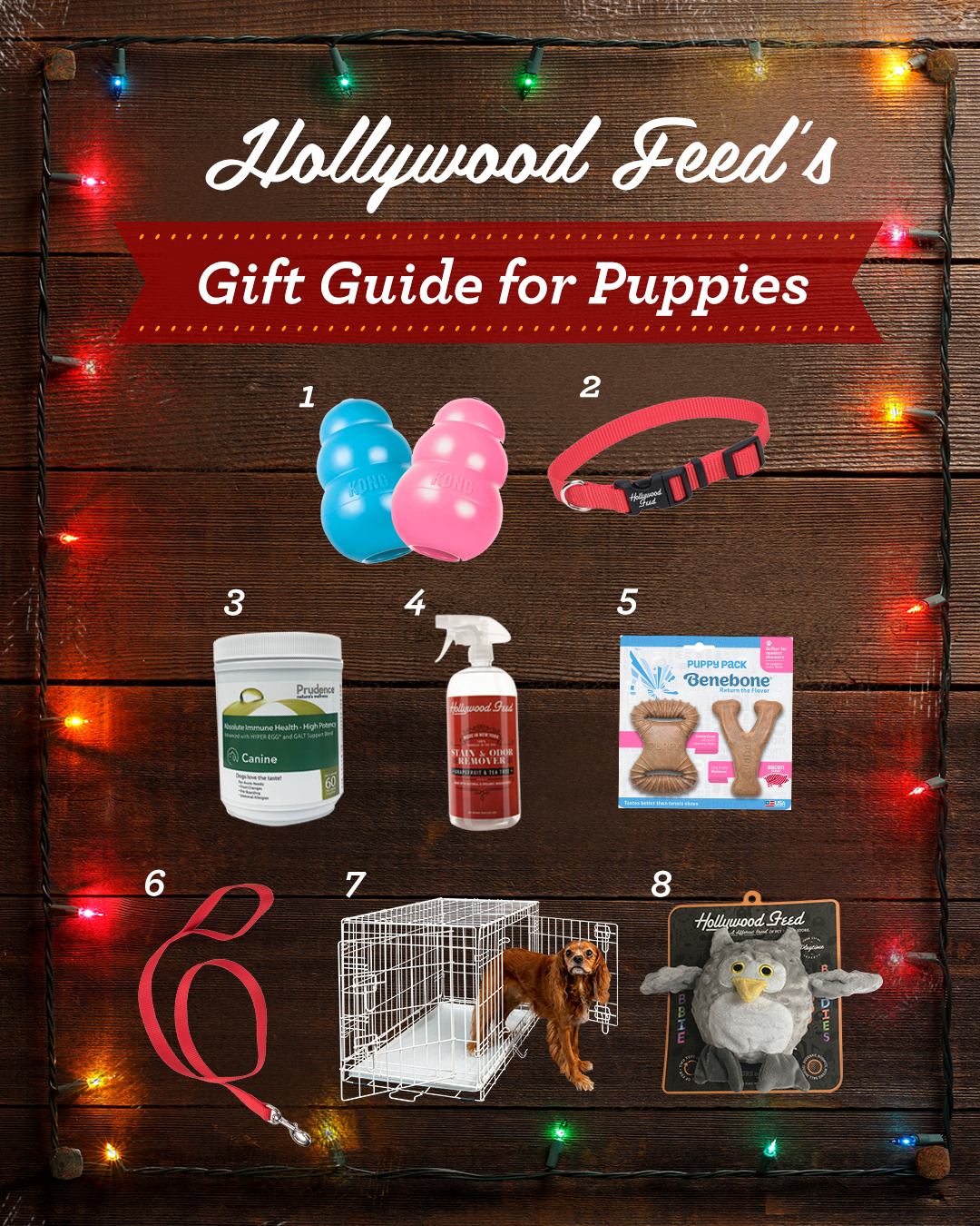 hollywood feed's gift guide for puppies