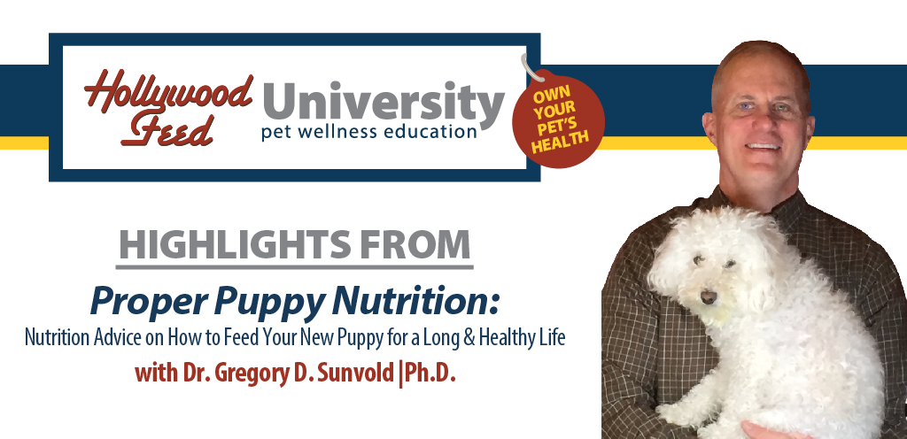 Dr. Gregory D. Sunvold and his pup