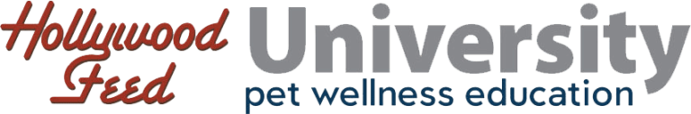 Hollywood Feed University Logo