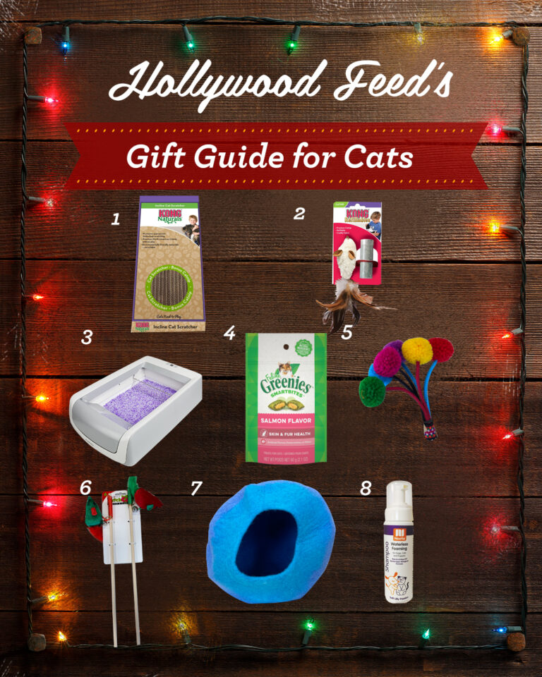hollywood feed's gift guide for cats