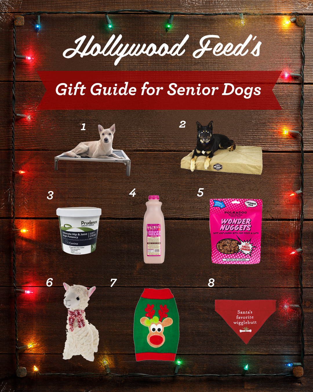 hollywood feed's gift guide for senior dogs