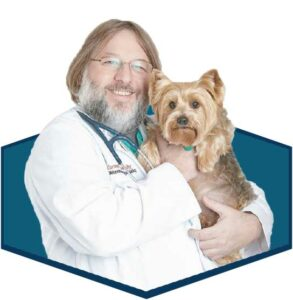 Dr. Joseph Bartges headshot